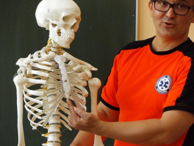 Klasa szkolna. Prowadzący szkolenie wskazuje położenie mostka na szkielecie człowieka.