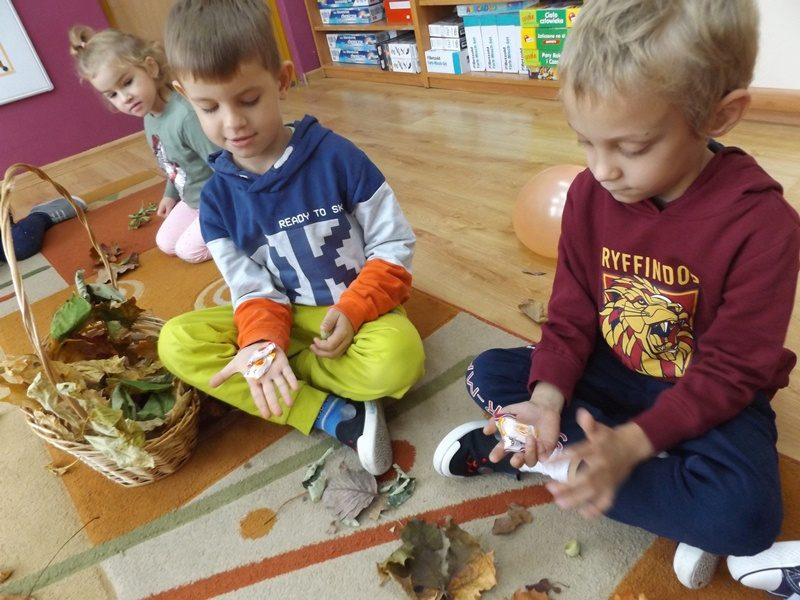 Sala przedszkolna. Na dywanie siedzi dwóch chłopców, którzy bawią się liśćmi.